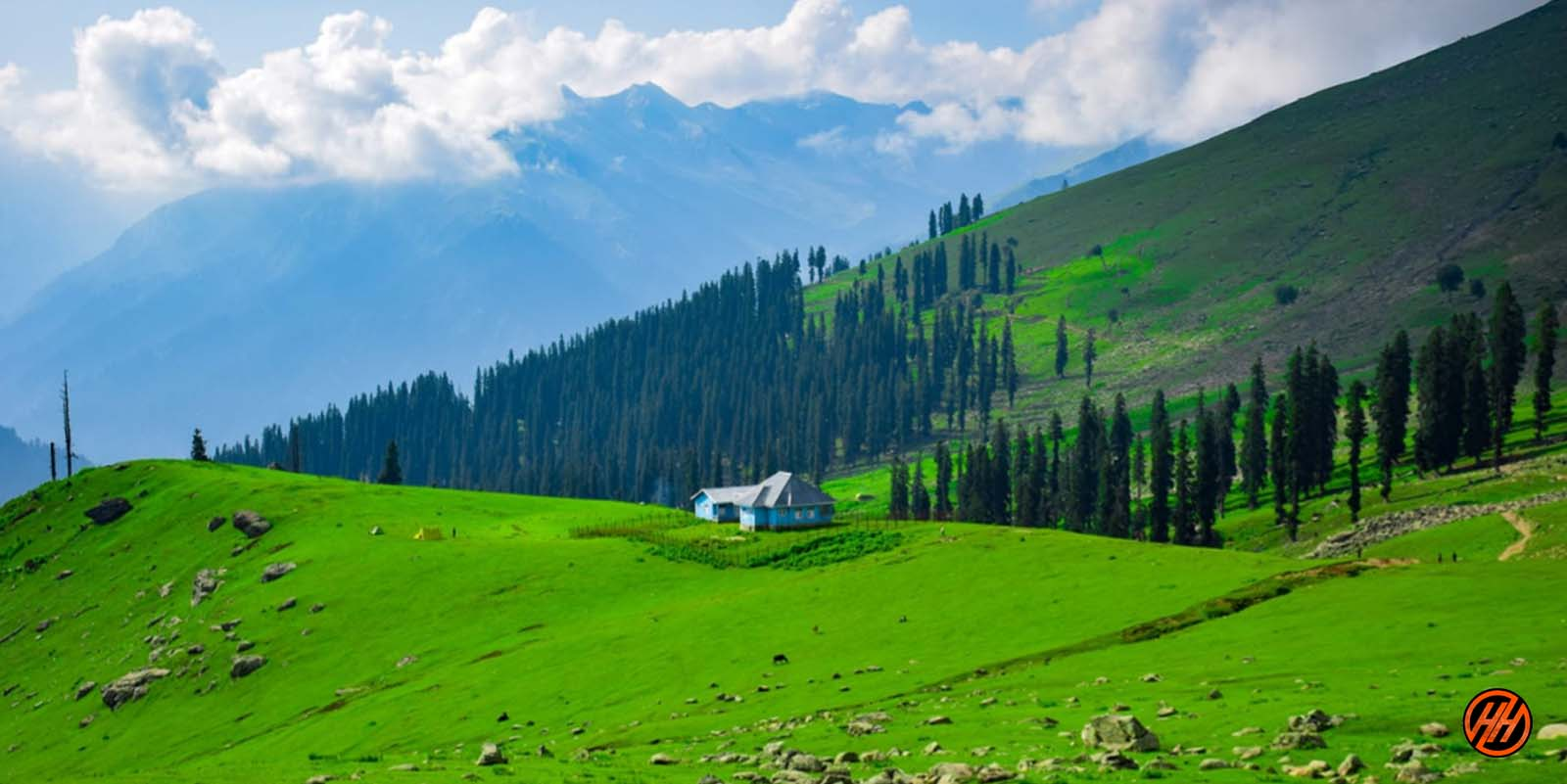 Beautiful green medows in Kashmir Great Lakes Trek