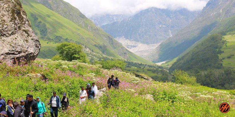 Valley of Flowers Trek4