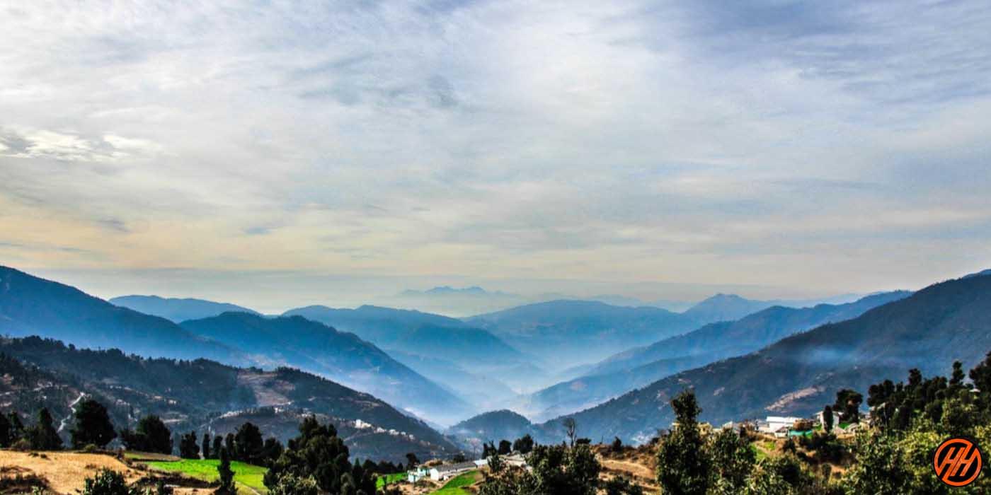 Trek View