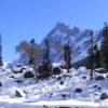 Harkidun – Ruinsara tal Trek